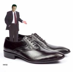 myshoes1